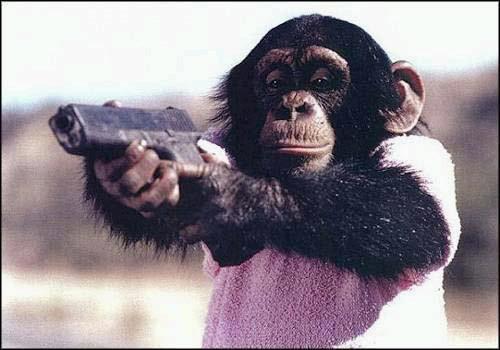 chimpanzee-glock
